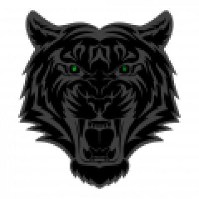 BlackTiger