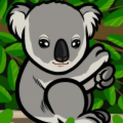 Koala-Crew
