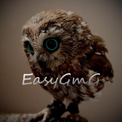 EasyGmG