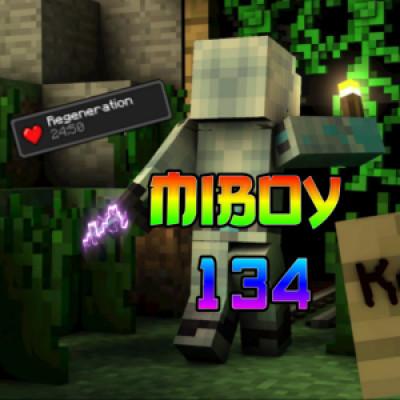 Miboy134