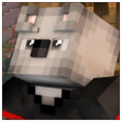 KoalaLP