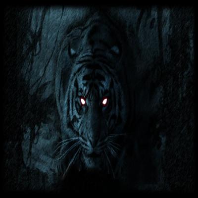 blacktiger007