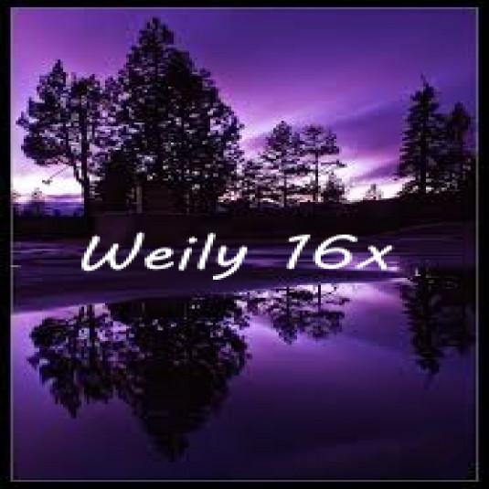 Weily 16x