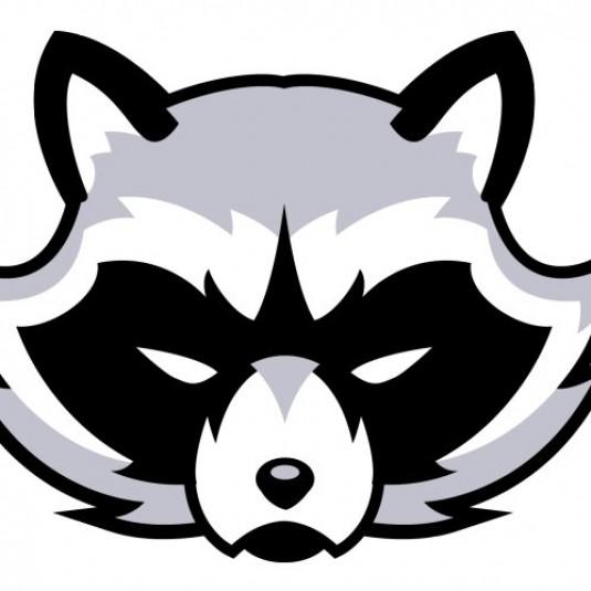 Raccoons V2
