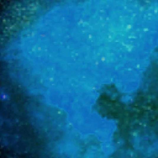 PhilHG V5 Edit Blue