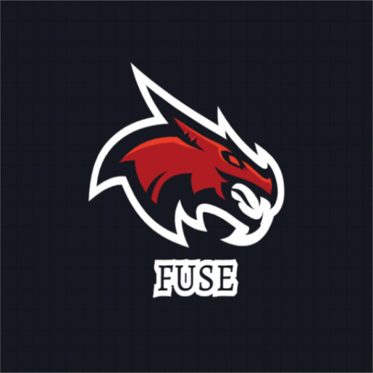 fuse pack