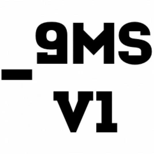 _9ms v1