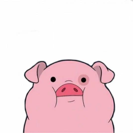 PinkyPiggy