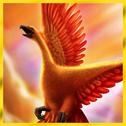 Radoz Phoenix 32x